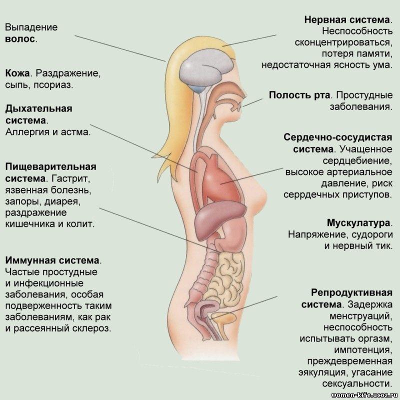Влияет ли рассеянный склероз на потенцию